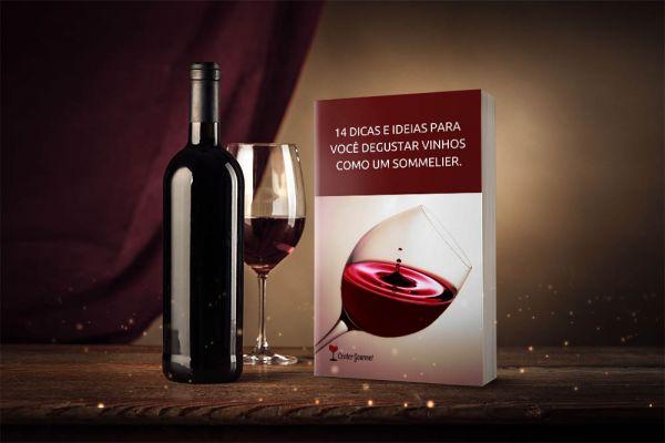 Center Gourmet Banner ebook -14 dicas para degustar vinhos