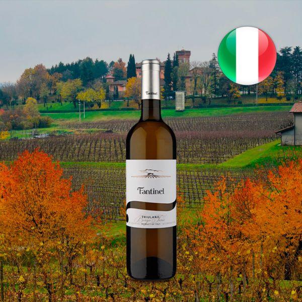 Fantinel Friulano Borgo Tesis Doc Friuli Branco 2018 - Oferta