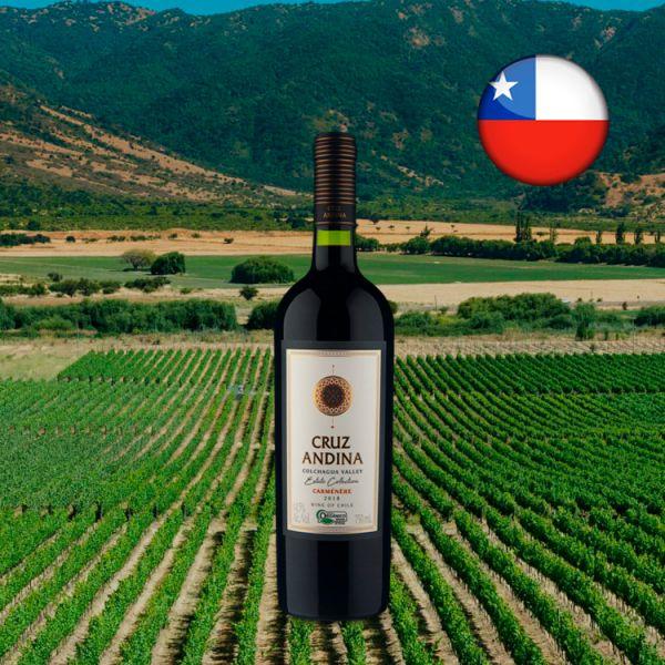 Cruz Andina Estate Collection Carménère Organico 2018   Center Gourmet Vinhos e acompanhamentos