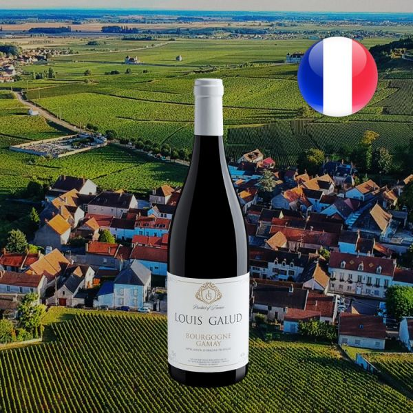 Louis Galud Gamay Bourgogne AOC - Oferta