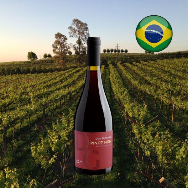 Don Giovanni Pinot Noir 2018 - Oferta