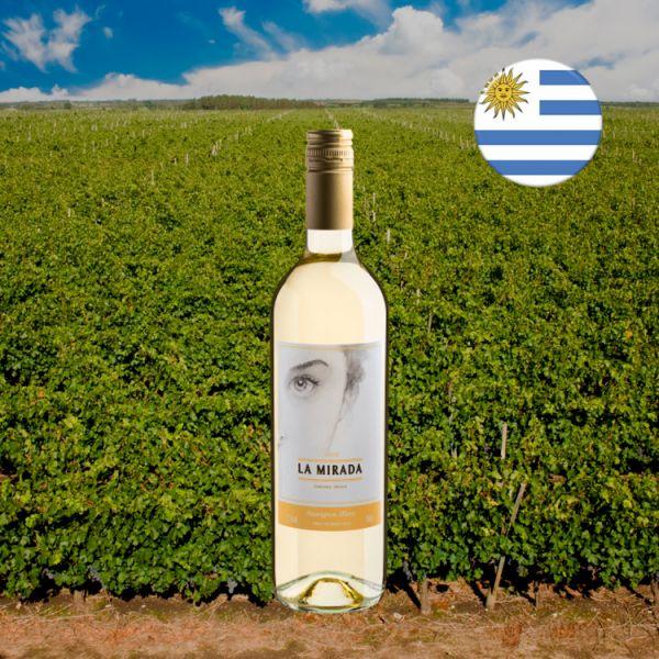 La Mirada Sauvignon Blanc 2020 - Oferta