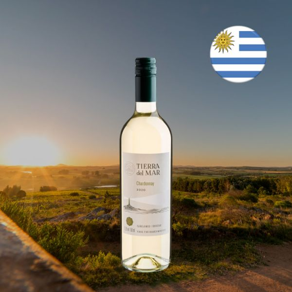 Tierra del Mar Chardonnay 2020 - Oferta