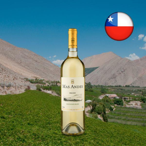 Baron Philippe de Rothschild Mas Andes Sauvignon Blanc 2019 - Oferta
