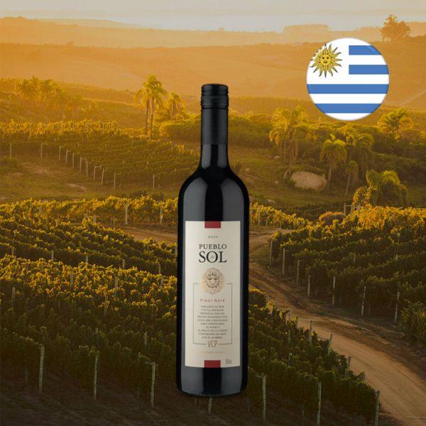Pueblo del Sol Pinot Noir 2020 - Oferta