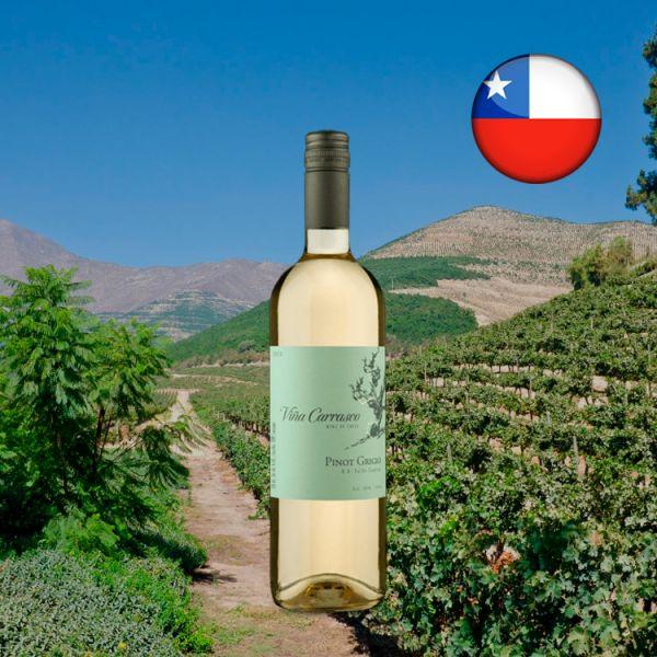 Viña Carrasco D.O. Valle Central Pinot Grigio 2020 - Oferta