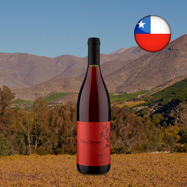 Viña Carrasco D.O. Valle Central Pinot Noir 2020 - Oferta