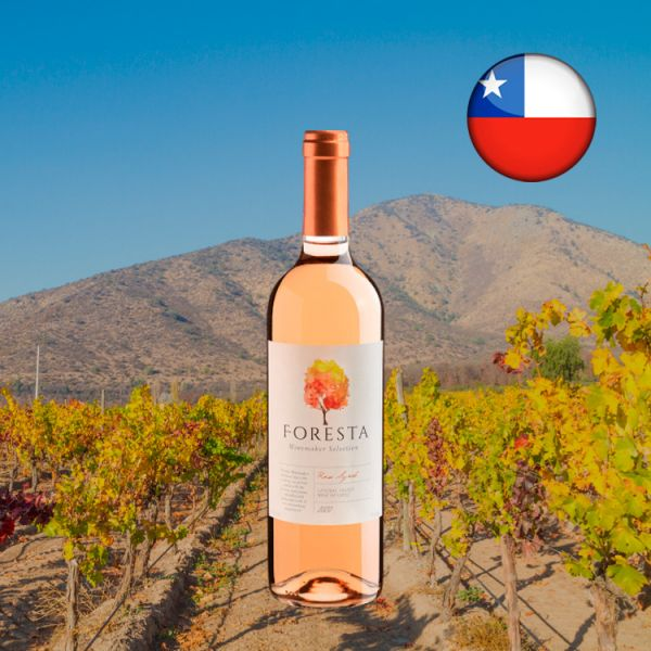 Foresta Winemaker Selection Rose Syrah Central Valley D.O. 2020 - Oferta