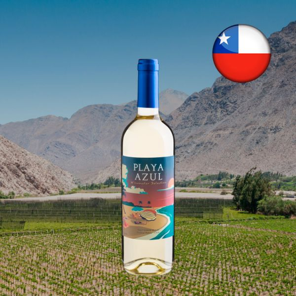 Playa Azul Sauvignon Blanc 2020 - Oferta