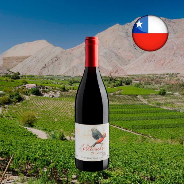 Sobrevuelo Pinot Noir Valle Central D.O. 2019 - Oferta