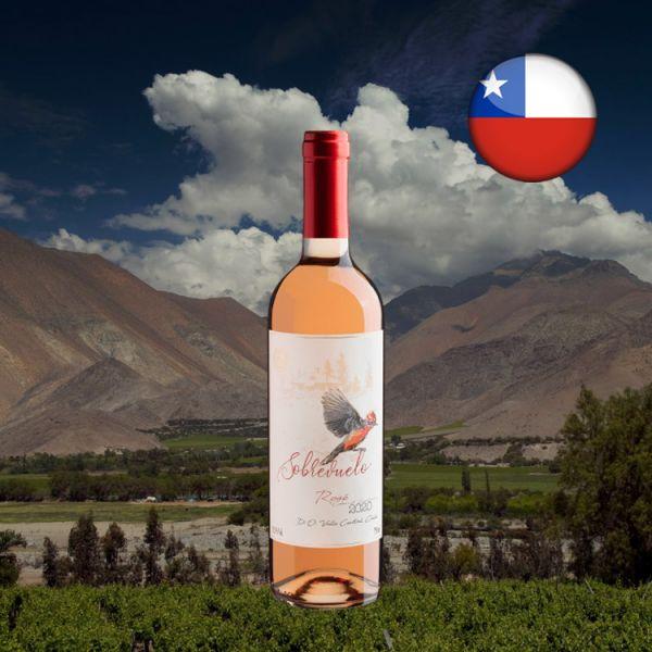 Sobrevuelo Rosé Cabernet Sauvignon Valle Central D.O. 2020 - Oferta