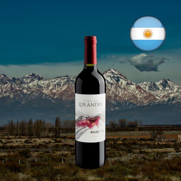 Viña De Los Andes Malbec 2020 - Oferta
