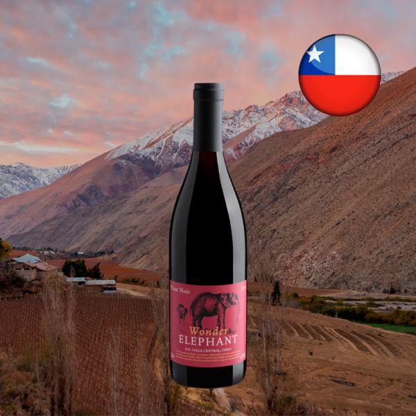 Wonder Elephant Pinot Noir Valle Central D.O. 2019 - Oferta